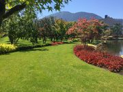 Chilliwack Lawn Mowing - Transformations Landscaping